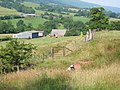 Brass Knoll Farm - geograph.org.uk - 73937.jpg
