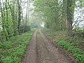 Bridleway to Drane Farm - geograph.org.uk - 1254182.jpg