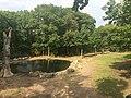 Bronx Zoo - New York - USA - panoramio (11).jpg