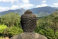 Buddha head, Borobodur, Indonesia.jpg
