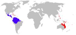 Bufo marinus distribution.png