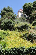 Building and Hillside Garden - Alfama District - Lisbon, Portugal (4633452276).jpg