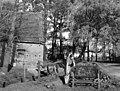 Bundesarchiv B 145 Bild-F001685-0011, Detmold, Bauernhof, Zuckerrüben.jpg