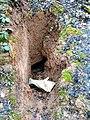 Bunker Hilgenbachstellung 6.jpg