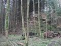 Burgstall Holenstein, Spitze des Burghügels, Blick nach SSE, nah.jpg
