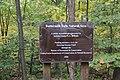Buttermilk Falls - panoramio (2).jpg