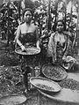 COLLECTIE TROPENMUSEUM Portret van twee vrouwen tijdens het oogsten van cacao TMnr 60025949.jpg