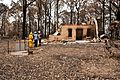 CSIRO ScienceImage 10660 Conducting bushfire research at Kinglake after the Black Saturday bushfires.jpg