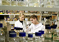 CSIRO ScienceImage 2387 Using Laboratory Equipment.jpg