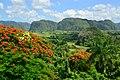 CUBA - panoramio (38).jpg