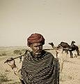 Camel Herder (90404847).jpeg