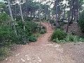 CaminoPortalsVells.jpg