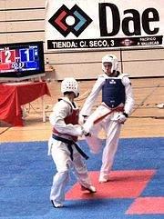 Taekwondo sparring match in Madrid (Spain).