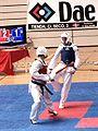 Campeonato absoluto promocion taekwondo enh.JPG