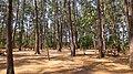 Campground, Anawangin Cove - panoramio.jpg