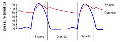 Essential hypertension - Wikipedia