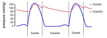 Lecturas de la presión arterial diastólica sistólica