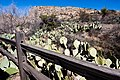 Carlsbad Caverns National Park and White's City, New Mexico, USA - 48344869827.jpg