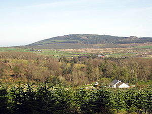 Carrick Mountain - Carrick from the SW
