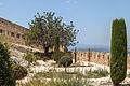 Castell de Xàtiva Castell Major Middle Garden.jpg