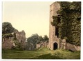 Castle, the octagonal tower, Goodrich, England-LCCN2002696771.tif