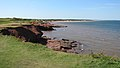 Cavendish Coast, Prince Edward Island (471107) (9450669298).jpg