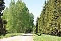 Ceļš - panoramio (8).jpg