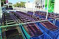 Centre commercial régional Ulis 2 aux Ulis le 23 août 2012 - 24.jpg