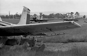 Cessna AgWagons and sheep, Feilding, Manawatu, New Zealand, 1973.jpg