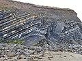 Chevron Folds, Loughshinny, Dublin.jpg