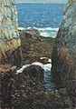 Childe Hassam - The North Gorge, Appledore, Isles of Shoals (1912).jpg