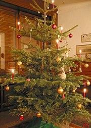 クリスマス・ツリー(ドイツ)