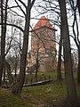 Chudów - ruiny zamku (2).JPG