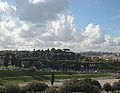 Circo Massimo seen from Palatine hill.jpg