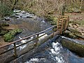 Clam bridge, River Bovey (2) - geograph.org.uk - 1084485.jpg