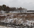 Clarence Cannon NWR 11 12 18 (44051473060).jpg