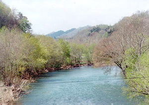 English: The Clinch River from U.S. Highway 23...