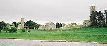 Clonmacnois viewed from river.jpg