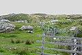 Cnoc Ard na Muilne - geograph.org.uk - 922664.jpg