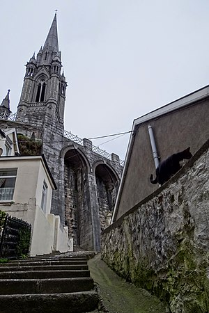 Cobh - The tower of St. Colman Cathedral from the streets below.