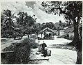 Collectie Nationaal Museum van Wereldculturen TM-60062333 Weg met kar en auto langs een dorp, centraal in beeld een overkapping waaronder kinderen les krijgen Trinidad fotograaf niet bekend.jpg