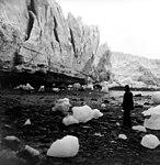 Columbia Glacier, Heather Bay, Calving Terminus Close-Up Ground View, 1973 (GLACIERS 1168).jpg