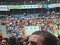 Concurs de Castells 2010 P1310210.JPG