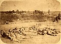 Confederate soldiers killed during the Battle of Corinth, Mississippi, which took place October 3 and 4, 1862.jpg