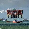 Container ship - Cosco Belgium - Europahaven Yangtzekanaal - Port of Rotterdam (25432477941).jpg