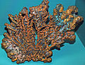 Copper (Mesoproterozoic, 1.05-1.06 Ga; Minesota Mine, Rockland, Upper Peninsula of Michigan, USA) (17116256807).jpg