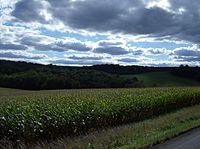 Cornfields of Hanover Township, Columbiana County.jpg