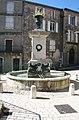 Cornus fontaine.JPG
