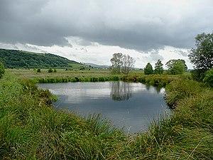 Ceredigion - Cors Caron, near Tregaron