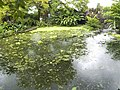 Costa Rica (6109909307).jpg